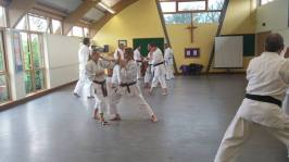 Paired kumite at a recent course at Woodham Walter.