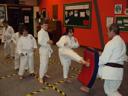 Children at the Woodham Walter Dojo work on their kicks.