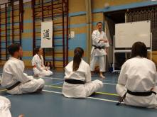 Tim Shaw teaching Wado principles on a course in Holland.