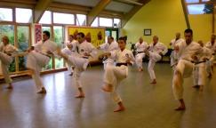 2008 - Senior class at Sugasawa Sensei's course at Shikukai Chelmsford.