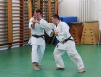 Chelmsford Shikukai Instructor Tim Shaw teaching in Budapest Hungary.