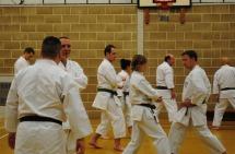 2013 - Colchester January weekend course with Sugasawa Sensei.