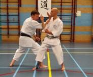 2014 - Shikukai Chelmsford instructor Tim Shaw teaching in Holland, demonstrating with Martijn Schelen.