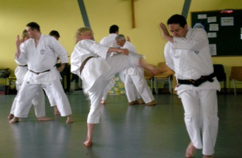 2008 - Special Kumite Course at Woodham Walter. Chris Mortimer & Steve Thain, Kihon Gumite Nihonme.