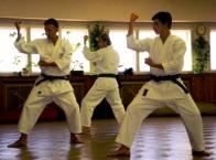 2008 - Shikukai Chelmsford instructor Tim Shaw teaching at the November course in Prague, Czech Republic.