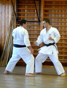 2008 - Steve Thain of Shikukai Chelmsford (L) & David Vlk of Shikukai Praha (R). November course in Prague.