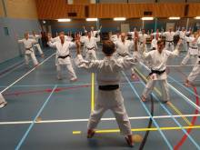 Tim Shaw Sensei teaching Seishan in Holland.