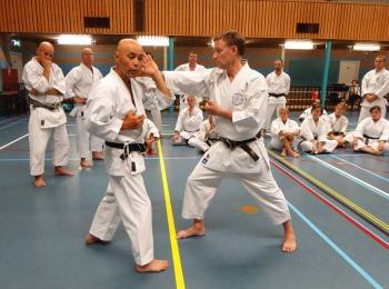 Sugasawa Sensei & Tim Shaw Sensei in Holland.