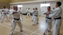 Naihanchi on the 2017 Winter Course hosted by Shikukai Chelmsford.