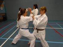 Sue Dodd of Shikukai Chelmsford on Holland course.