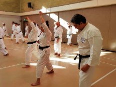 Shikukai Winter Course.