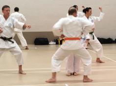 Practice of Pinan Sandan, Shikukai Winter Course.