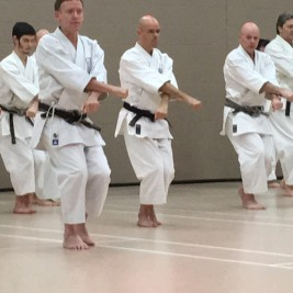 Tim Shaw teaching on the Shikukai Winter course.