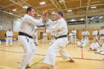 Tim Shaw & Steve Thain demonstrating on the Shikukai Spring Course.