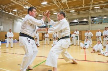 Tim Shaw & Steve Thain demonstrating on the Shikukai Spring Course.