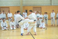 Tim Shaw teaching Irimi techniques, with Steve Thain, Spring Course
