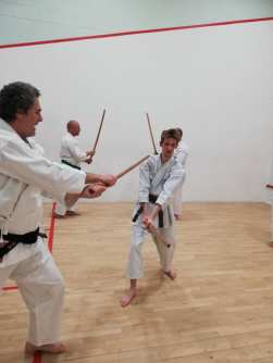 Learning Wado principles through the bokken.