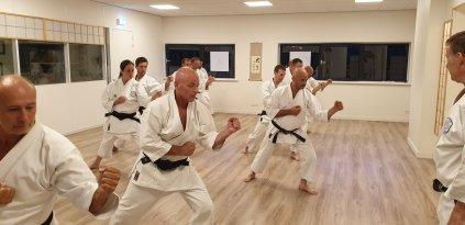 Nagashizuki practice, Holland.
