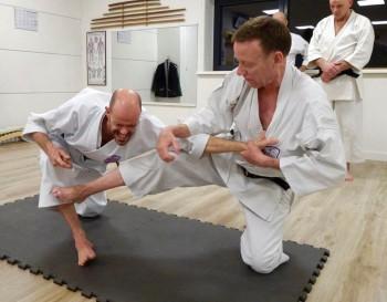 Tim Shaw teaching tanto dori in Holland.